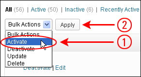 How To Update Multiple WordPress Plugins