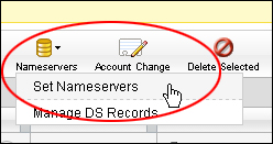 Setting Up Your Nameservers
