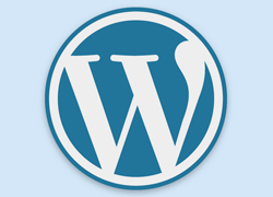 Your WordPress Site Administration Area