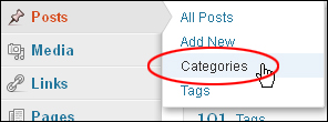 Using WordPress Posts - Categories