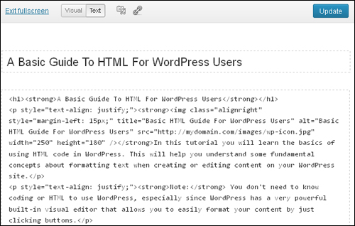 Fullscreen View - WordPress Text Editor