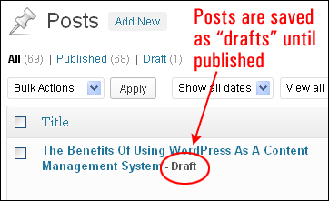 Using WordPress Posts