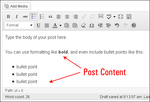 Using WordPress Posts - Post Content Box